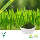 Organic Wheatgrass Powder by Us Greens