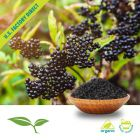 Elderberry Whole Organic by American Botanicals