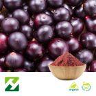 Organic Acai Berry Extract 4:1