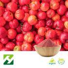 Organic Acerola Cherry Extract 27% Vitamin C