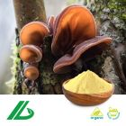 Organic Black Fungus Extract 20% Polysaccharide