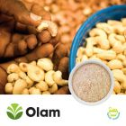 Organic Cashew Meal (Pasteurized) by Olam