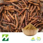 Organic Cordyceps Sinensis Extract 40% Polysaccharides