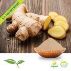 Organic Ground Ginger Root