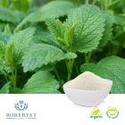 Organic Lemon Balm Powder 7% Rosmarinic Acid by Robertet