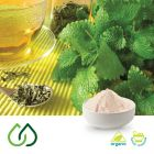 Organic Lemon Balm Dry Extract