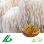 Organic Lion's Mane Extract 30% Polysaccharide