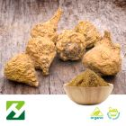 Organic Maca Root Extract 4:1