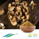 Organic Maitake Mushroom Extract by Hunan NutraMax