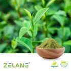 Organic Matcha Powder by Nanjing Zelang