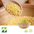 Organic Millet Extract 10:1