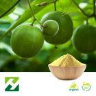 Organic Monk Fruit Extract 50% Mogroside V