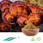 Organic Reishi Mushroom Extract by Hunan NutraMax