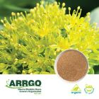 Organic Rhodiola Rosea Root (1.0% Rosavins) (Milled) by ARRGO