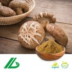 Organic Shiitake Mushroom Extract 30% Polysaccharide