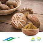 Organic Shiitake Mushroom Extract by Hunan NutraMax Inc.