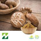 Ogranic Shiitake Mushroom Extract 40% Polysaccharides UV