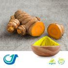Organic Turmeric Root Powder by Tianjiang