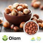 Organic Whole Hazelnuts