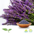 Lavender (Whole, Organic) by American Botanicals