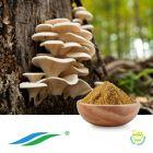Oyster Mushroom Extract by Hunan NutraMax Inc.