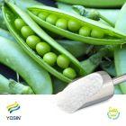 Pea Fiber 60% by Yosin