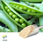 Pea Protein Isolate 85%