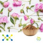 Peony Extract 8% Paeoniflorin (Irradiated) by Shaanxi Undersun Biomedtech Co., Ltd