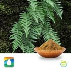 Polypodium Leaves Extract 2.8% Polyphenols (UV) by Monteloeder