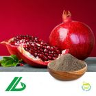 Pomegranate P.E. 40% Ellagic Acid