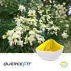 Quercefit® (Bioavailable Quercetin) by Indena