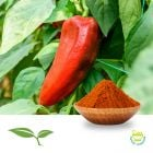 Red Pepper 10-30 HU Ground by American Botanicals