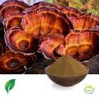 Reishi Mushroom Extract 35% Polysaccharides (Sporocarp)