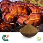 Reishi Mushroom Extract 35% Polysaccharides (UV) (cGMP)