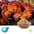 Reishi Mushroom 12:1 Full-Spectrum Extract by Tianjiang Pharmaceutical Co., LTD.