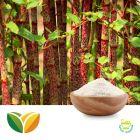 Resveratrol 98% (Polygonum Cuspidatum Extract) by Tianhua Pharmaceutical
