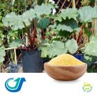 Rhubarb 4:1 Full-Spectrum Extract by Tianjiang Pharmaceutical Co., LTD.