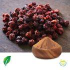 Schisandra P.E.16% Schisandra Acid by Changsha Sunnycare Inc