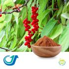 Schisandra Berry 6:1 Full-Spectrum Extract by Tianjiang Pharmaceutical Co., LTD.