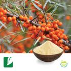 Sea Buckthorn Extract 5:1