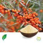 Sea Buckthorn Extract 10:1