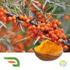 Sea buckthorn fruit powder (freeze-dried) by Chongqing Joywin Natural Products Co.,Ltd.