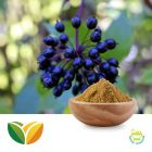 Siberian Ginseng Extract 0.8% Eleutherosides by Tianhua Pharmaceutical