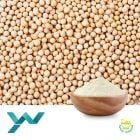 Soy Protein Isolate 90% (YP928A) by Shandong Yuwang Ecological Food Industry Co., Ltd
