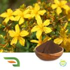St John's Wort Extract by Chongqing Joywin Natural Products Co.,Ltd.