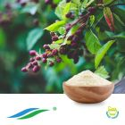 Sweet Blackberry Leaves Extract 70%-95% HPLC by Hunan NutraMax Inc.