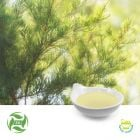 Tea Tree Oil (25kg Drum) by Ji'AnZhongxiangNaturalPlantCo., Ltd