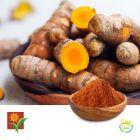 Turmeric P.E. 30% Granules by Umalaxmi