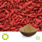 Wolfberry Extract 50% Polysaccharide