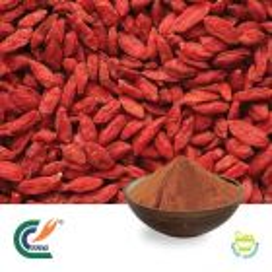Wolfberry P.E. 50% Polysaccharides (cGMP)